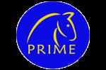 Prime Horse